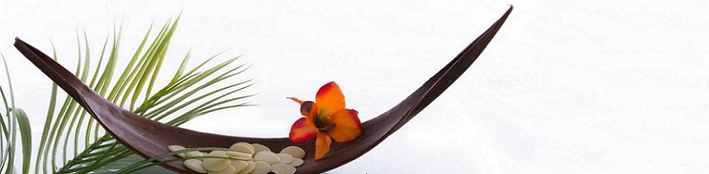 Priorité Bien-Etre – Massage bien-être – Réflexologie plantaire – Sophrologie – dans le Perche